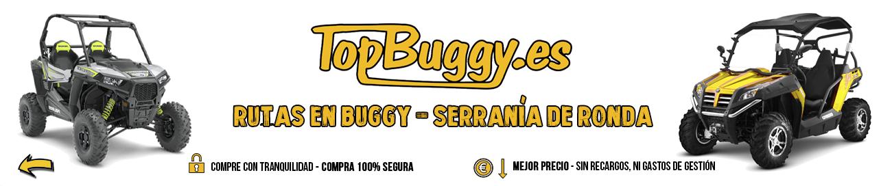 TopBuggy.es